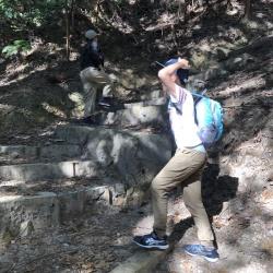 山登りとマラソン